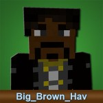 Rabbit Arena Minecraft Admin Big_Brown_Hav